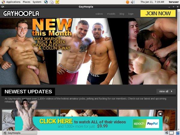 Gay Hoopla Websites