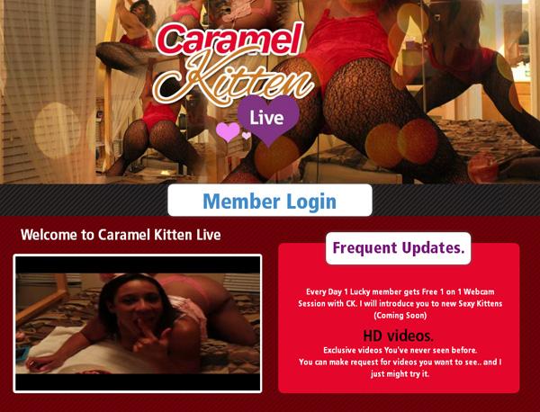 Caramel Kitten Live Archives